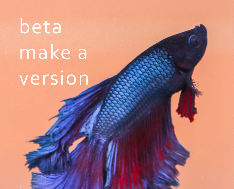 beta make a version fish