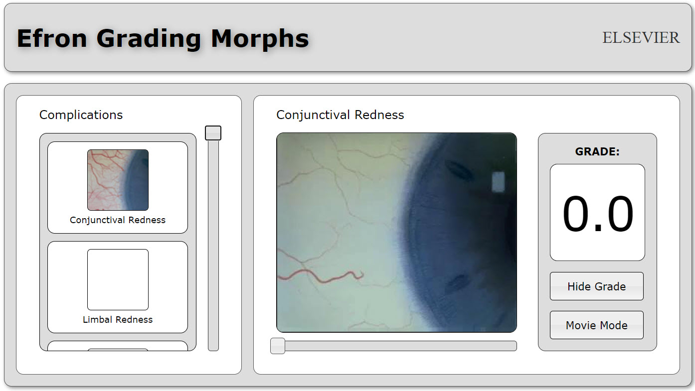 Proof of Concept: Grading Morphs